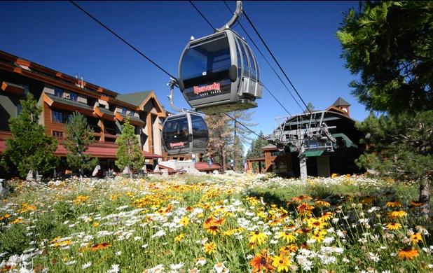 Heavenly Tahoe Condo Rental - Local Attractions